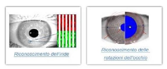Figura 1 Iride